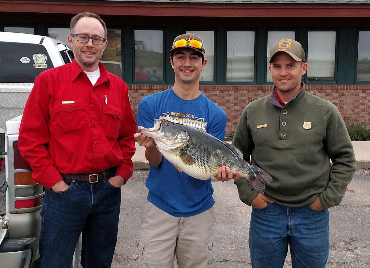 Record-breaking catch: 11 51-lb largemouth bass stuns