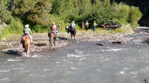 Couple rescued by SAR after they were bucked from mounts