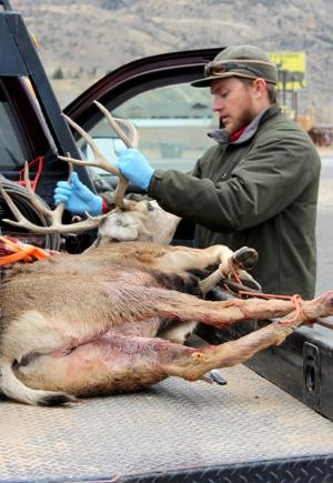 Game and Fish check station open to hunters through Friday