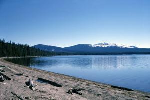 Yellowstone kills aggressive bear near Heart Lake
