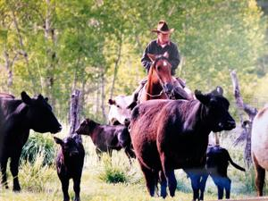 Three longtime Meeteetse ranchers part of 2016 class of inductees