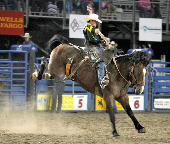 Saddle Bronc Riding Dates Back To Rodeo S Early Roots