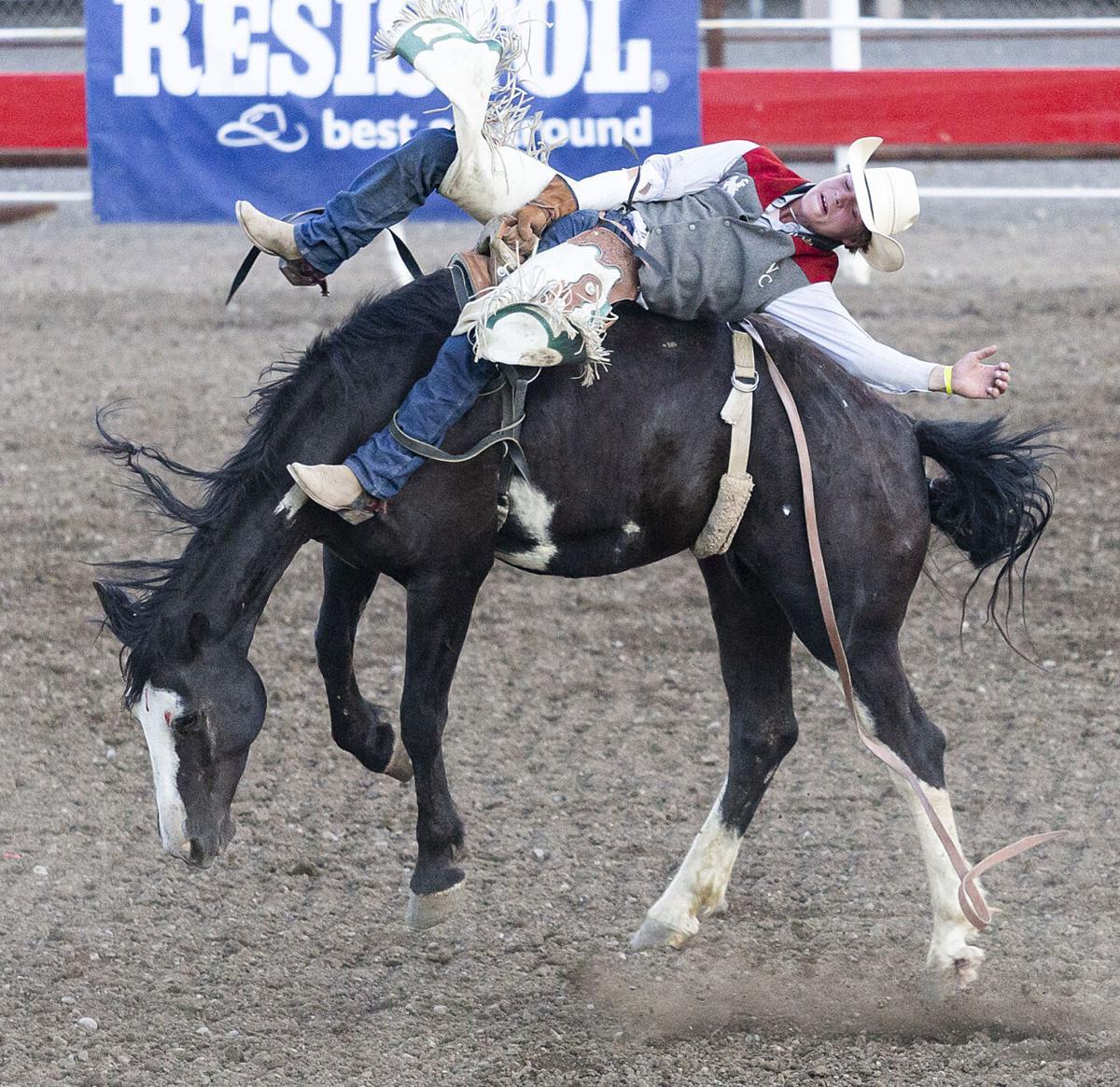 Trapper Rodeo