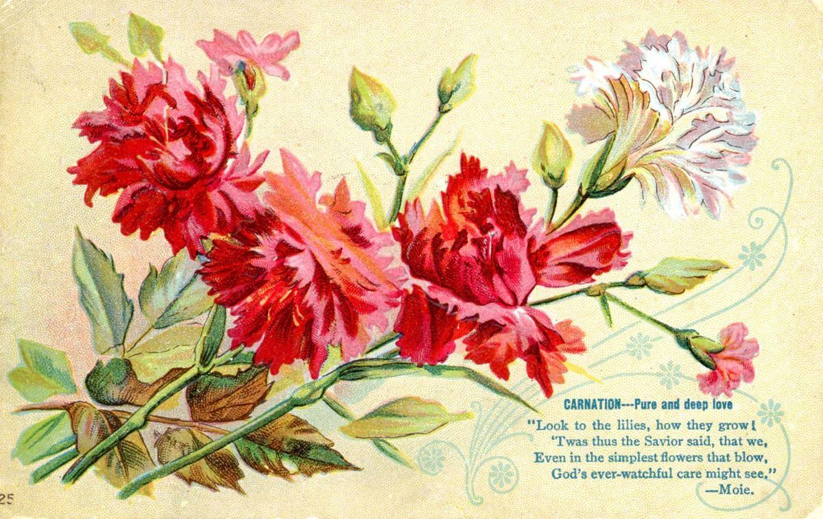 FlowersHanchett001.jpg