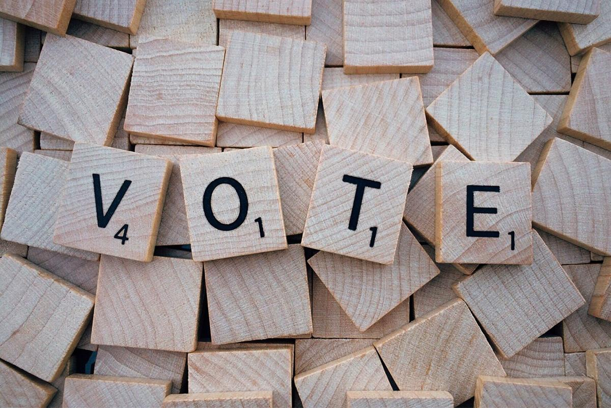stock vote election voting