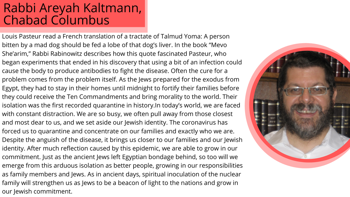 Rabbi Areyah Kaltmann.png