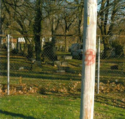 Lansing Avenue Jewish Cemetery vandalism (copy)