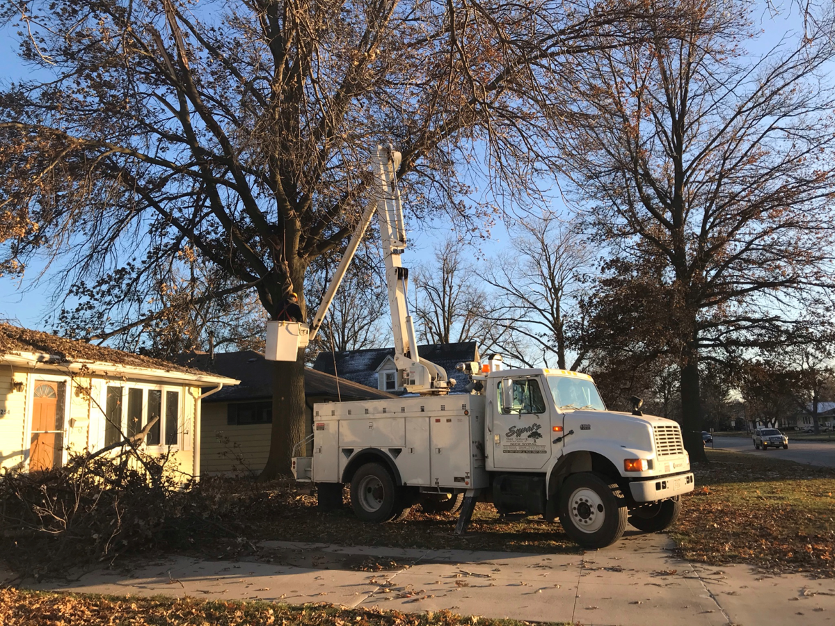 David City storm clean-up