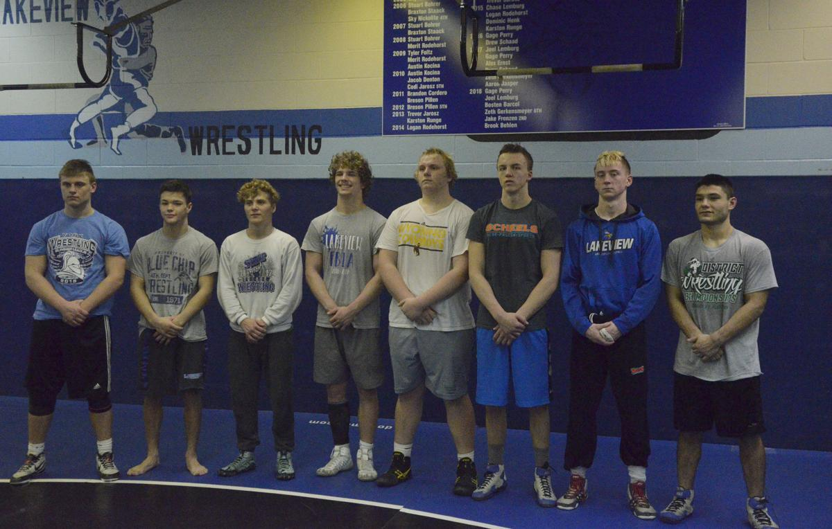 Lakeview wrestling state qualifiers
