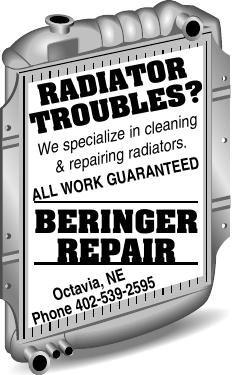 Beringer Repair