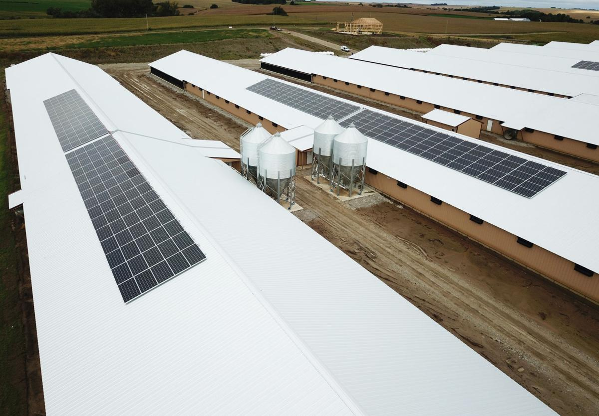 Schuyler solar panels