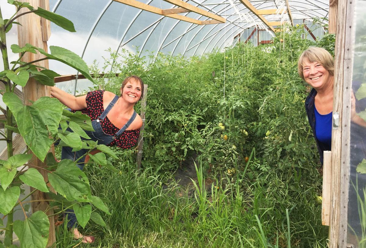Theilen Produce Gardens
