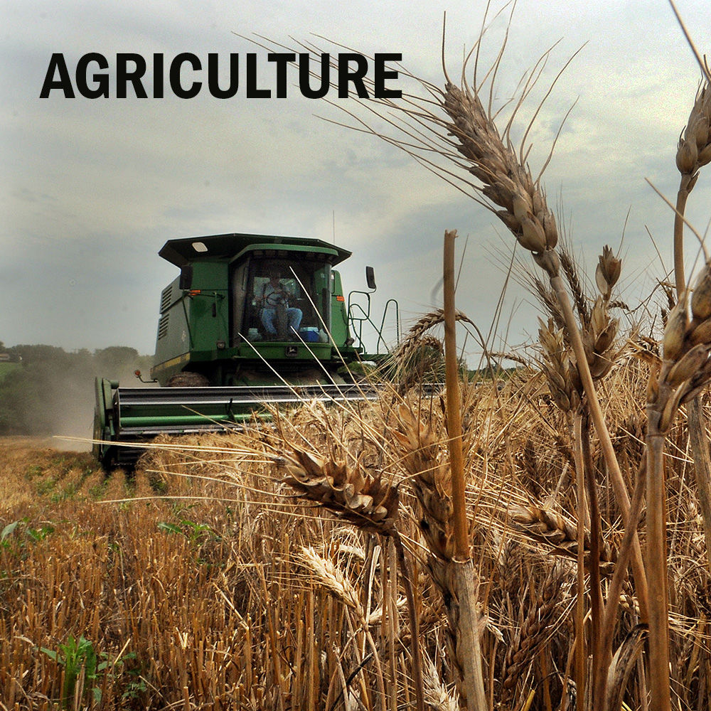 Agriculture logo 2014