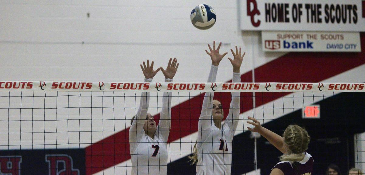 Scouts Volleyball