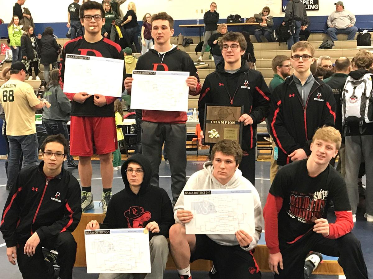 David City State Wrestling qualifiers 2018