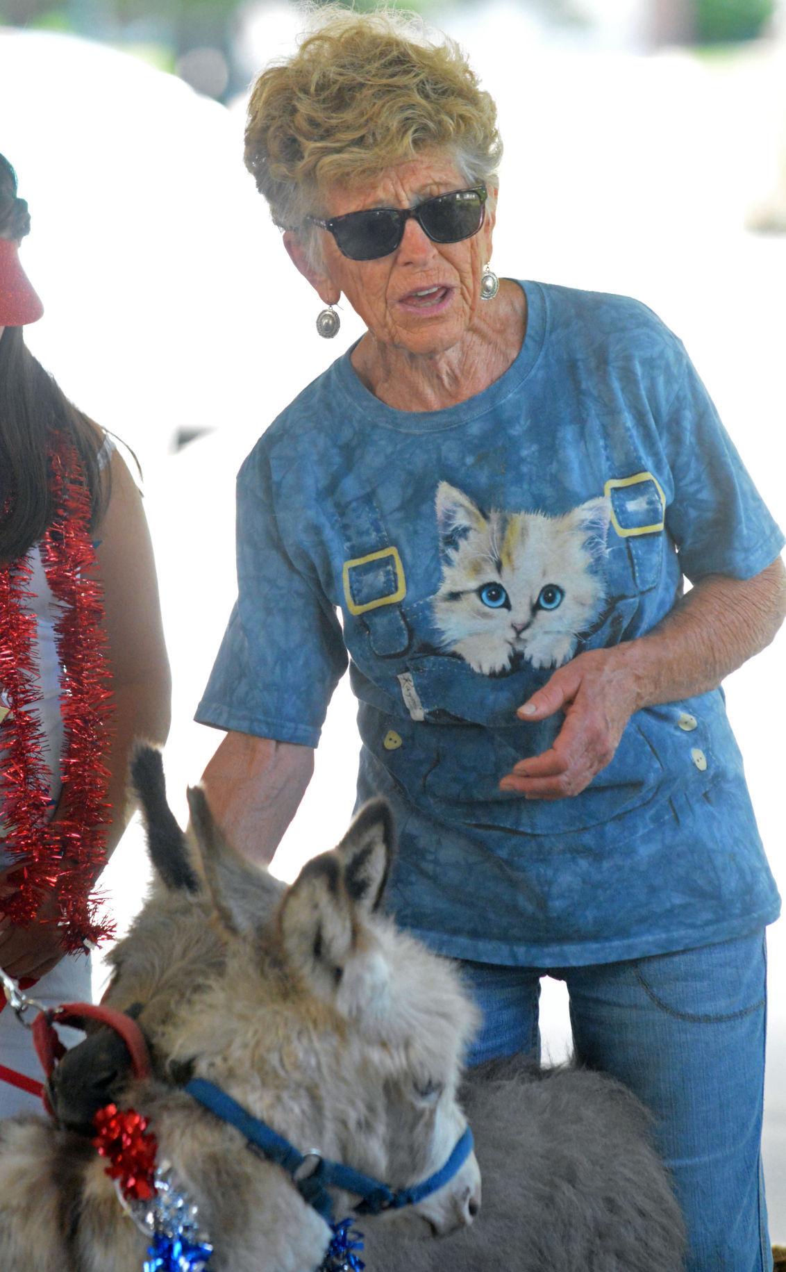 Miniature donkeys bring big smiles | Local | columbustelegram com