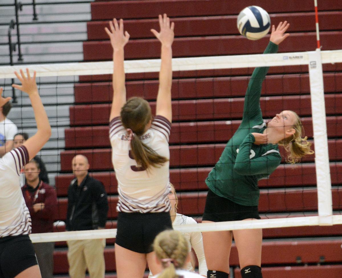Schuyler Volleyball