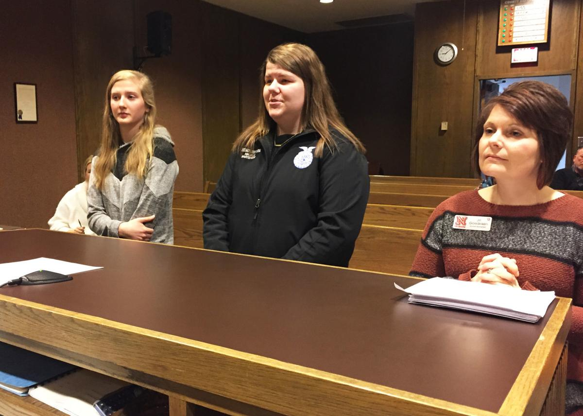 February 4 County Board 2