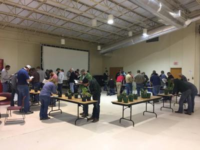 Nebraska Extension crop scout training on March 13