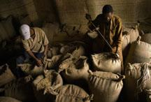 Starbucks calls its coffee worker-friendly - but in Ethiopia, a day's pay is a dollar