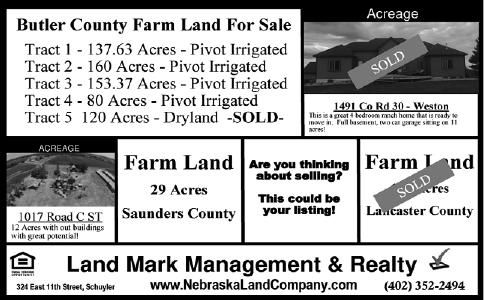 Land Mark Management