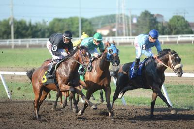 Columbus Horse Racing