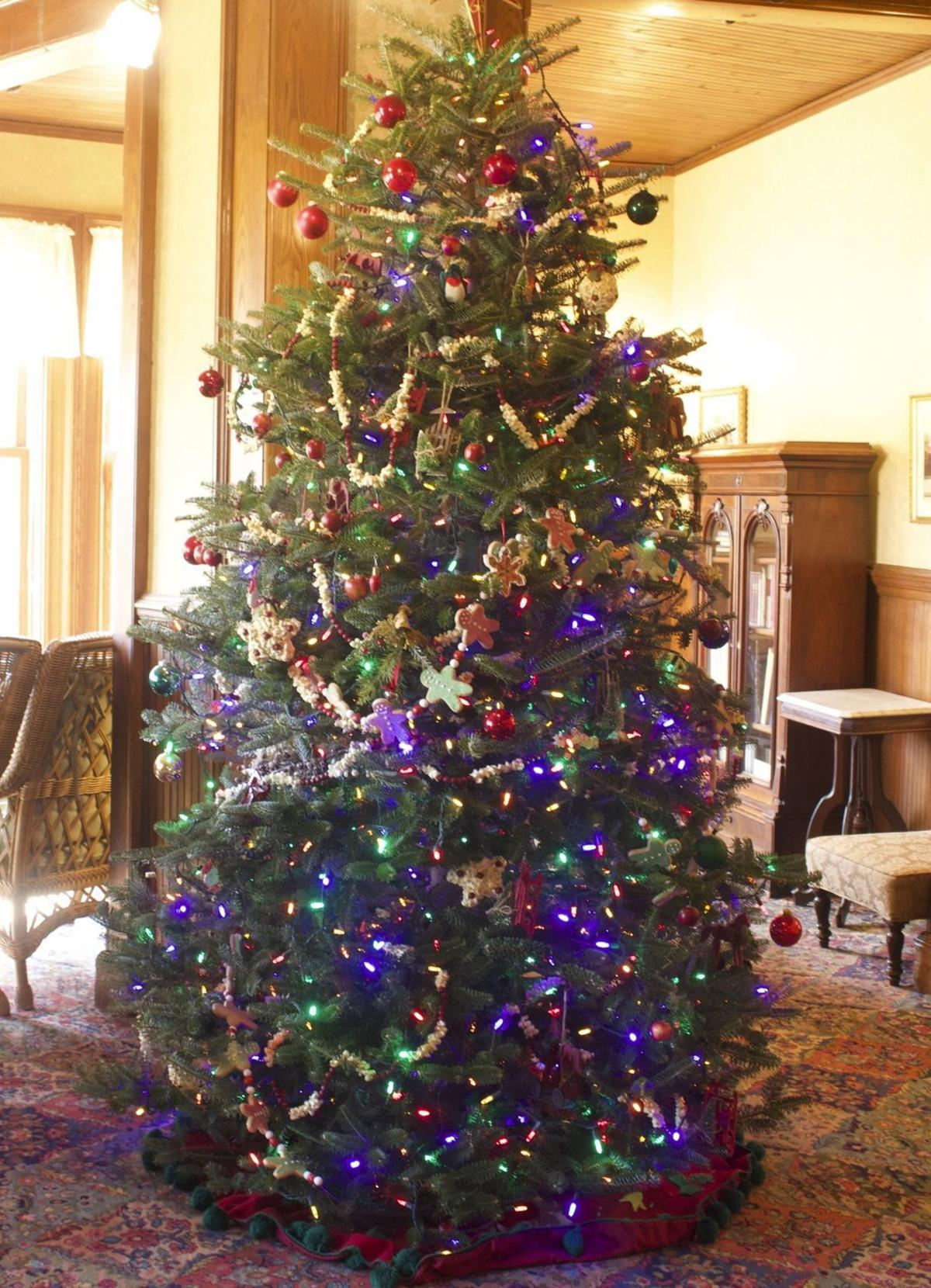 s Christmas tree style in Lincoln and around the world
