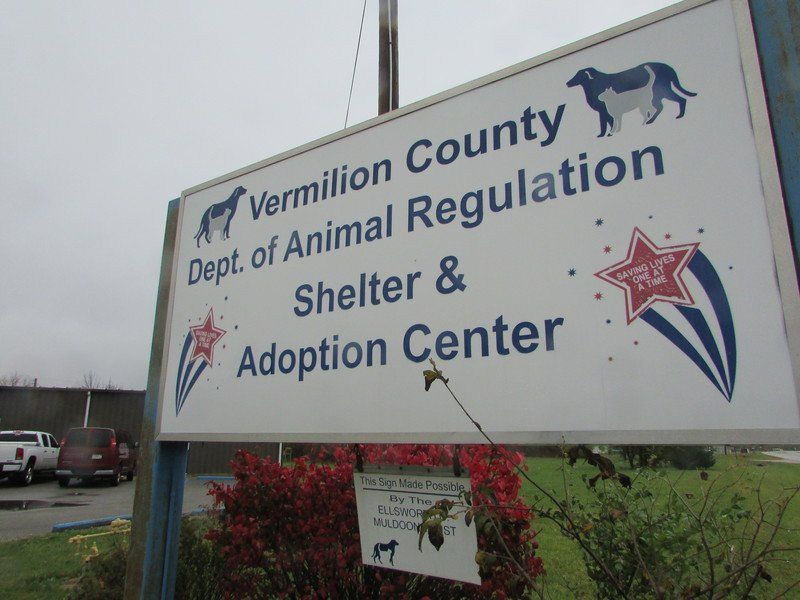 Danville officials propose $120,000 budget for animal