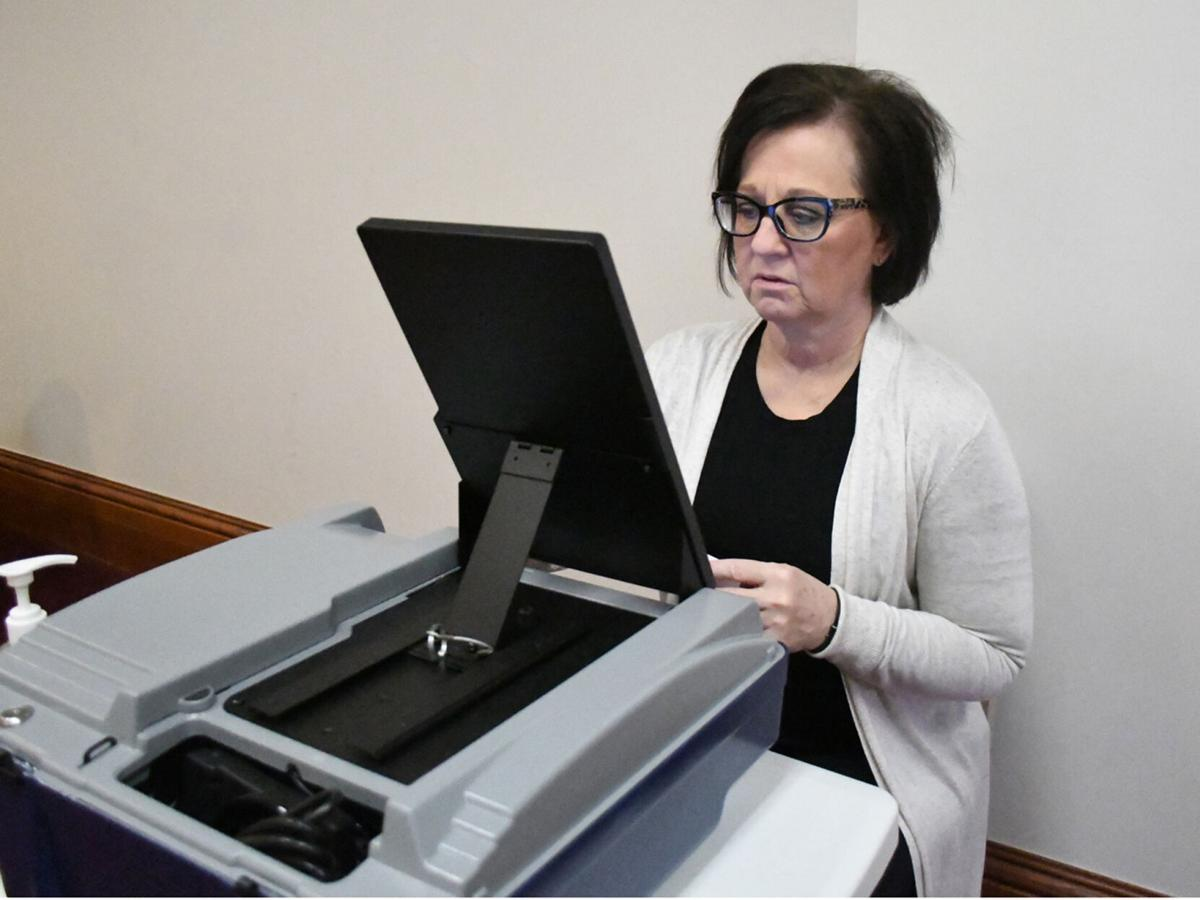 Danville, county see record-setting voting | News ...
