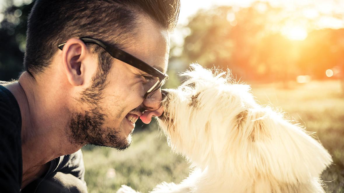 Time spent with your pet can improve your health