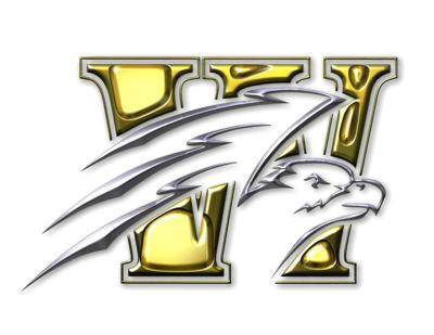 Falcon logo 1.jpg