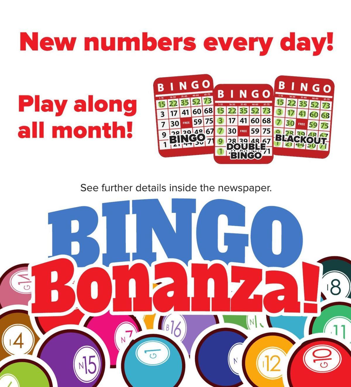 Bingo Promo
