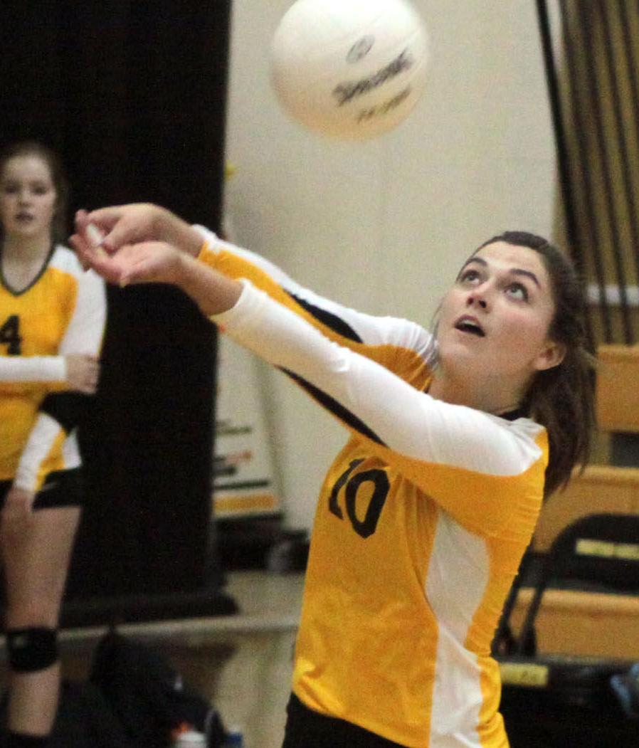 Vikettes sweep anamosa at home sports for Laporte city police