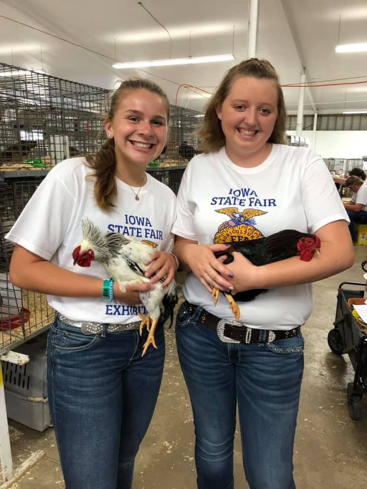 State Fair poultry