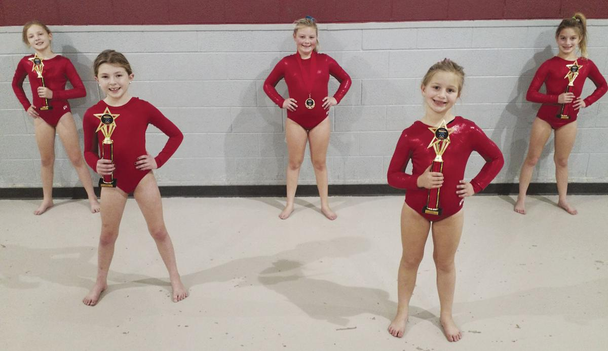 Moser gymnasts