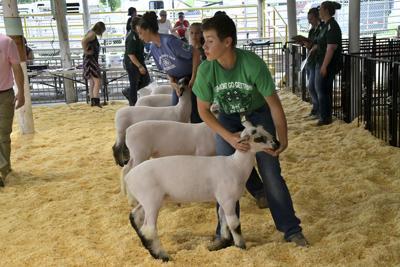 County Fair cancelled events