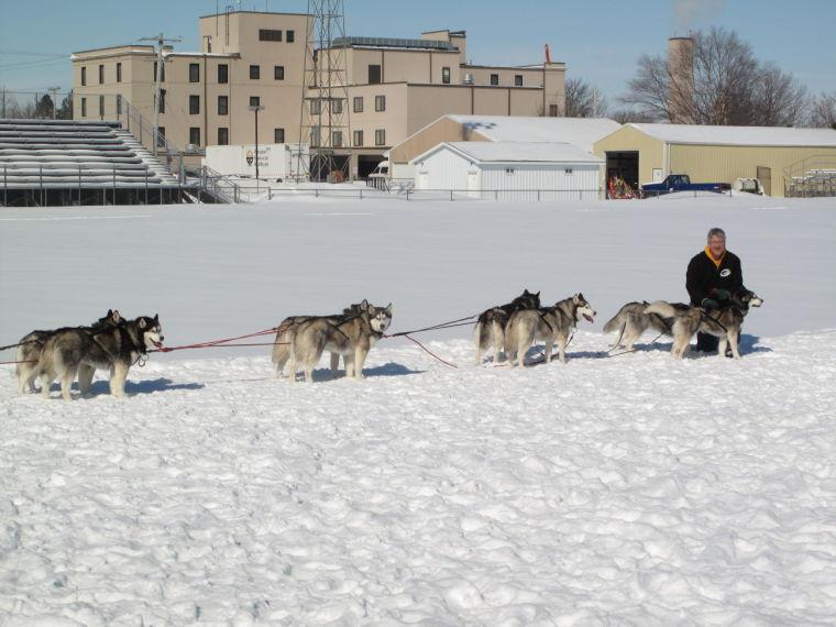 Sled dog team gives st...
