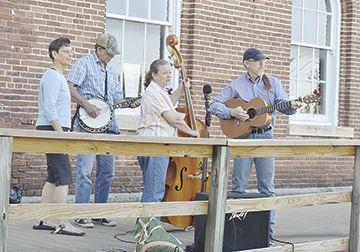 Great Bluegrass Herons
