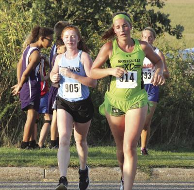 Several NFV runners set personal records at West Delaware