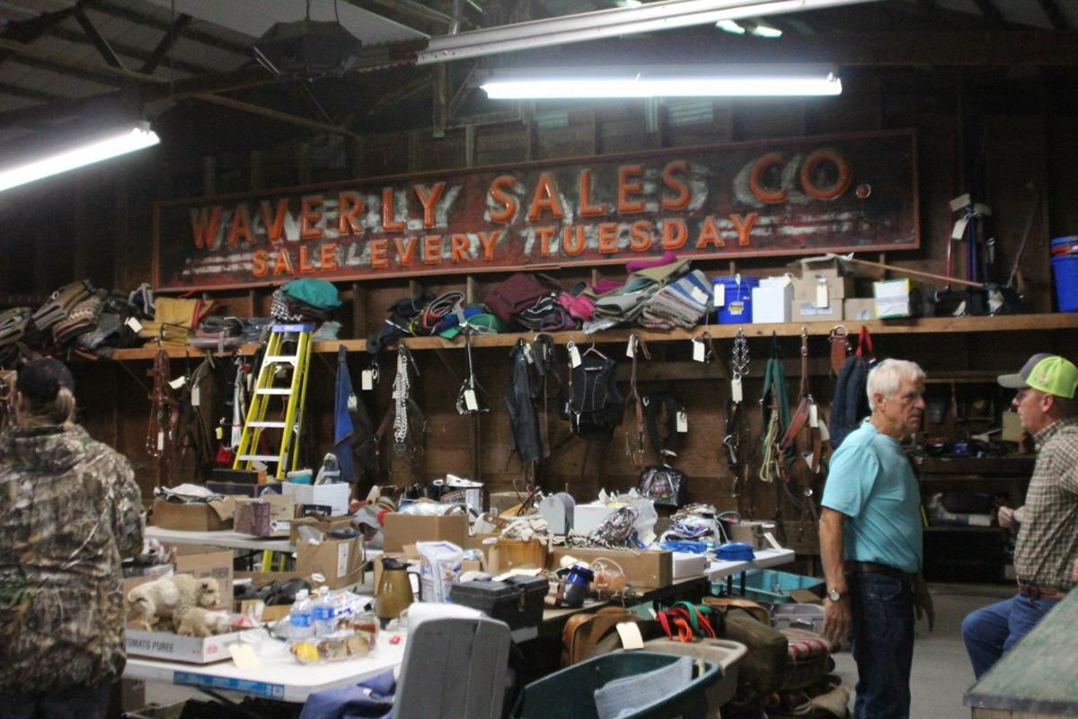 Warehouse at Waverly Midwest Horse Sale