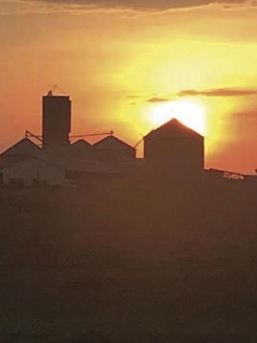 201008_ol_news_saathoff_farm-img