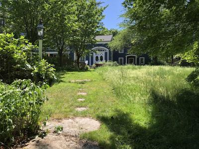 The Incredible Shrinking Lawn: How to create a nature-friendly yard