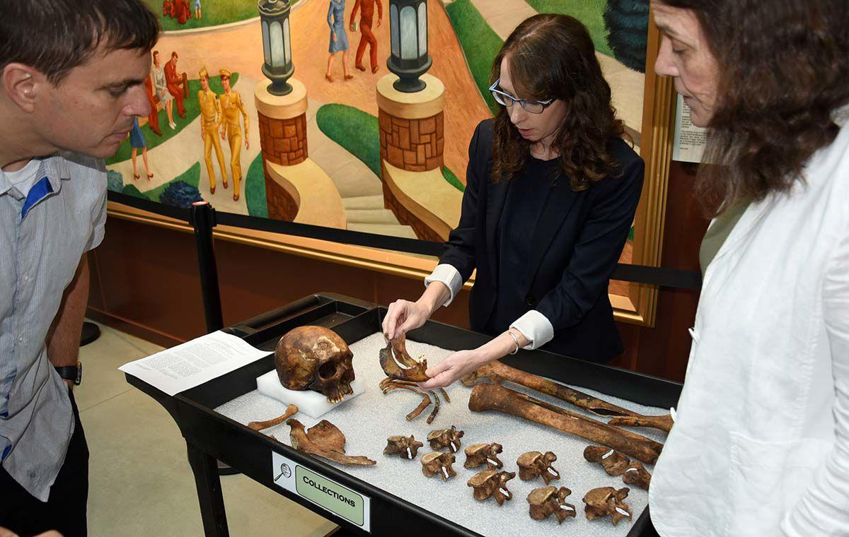 """Dr. Kristen E. Pearlstein, Collections Manager, National Museum of Health and Medicine displays remains of """"JB-55"""" during a Science Café at the museum, Silver Spring, Md., July 23, 2019. """"JB-55"""" remains were that of a suspected """"vampire"""" in the mid-1800s."""