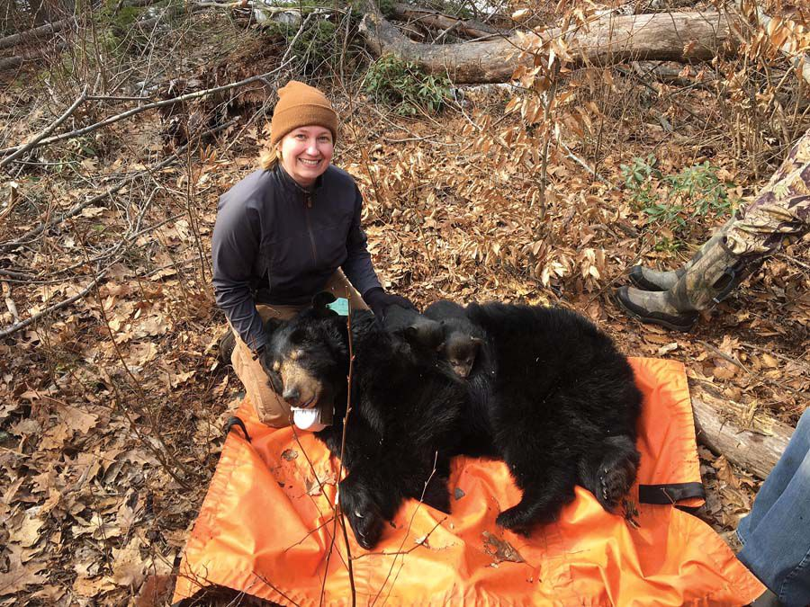 UCONN wildlife expert Dr. Tracy Rittenhouse with an adult bear under study, briefly tranquilized by state DEEP staff while a GPS collar was changed before the bear and family were returned to the wild.jpg