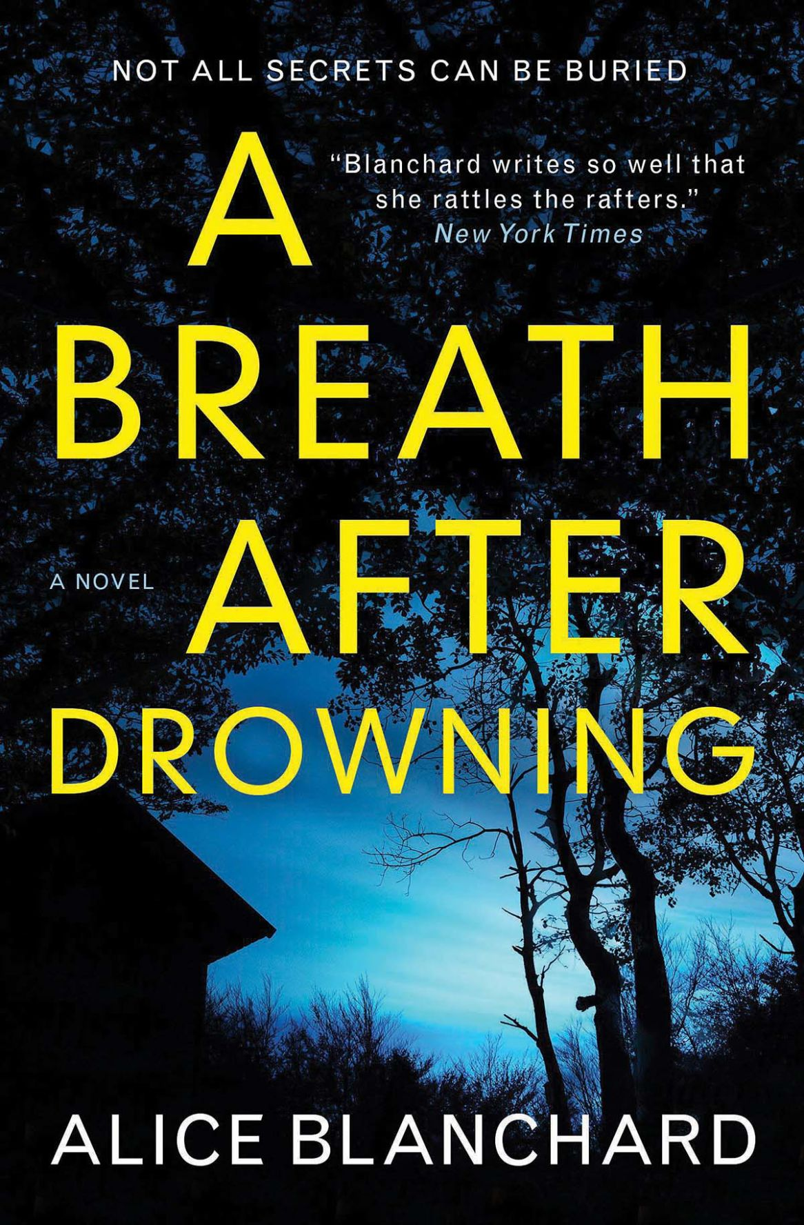 Breath After Drowning cover.jpg