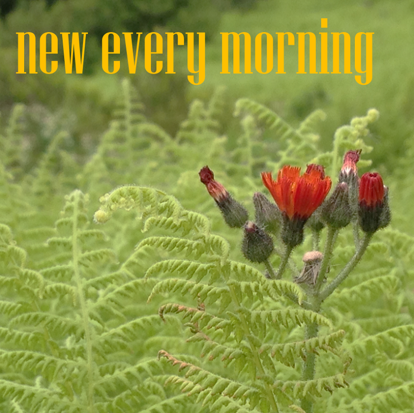 """GMChorale Presents """"New Every Morning"""""""