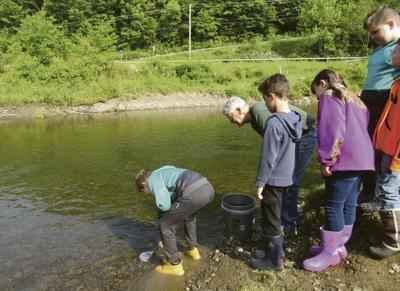 Anglingmay see surge in popularity during trout season
