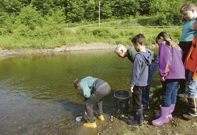 Students say farewell to fish friends, stock creek
