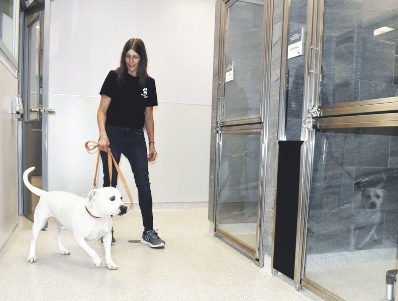 Susquehanna SPCA moves into new home