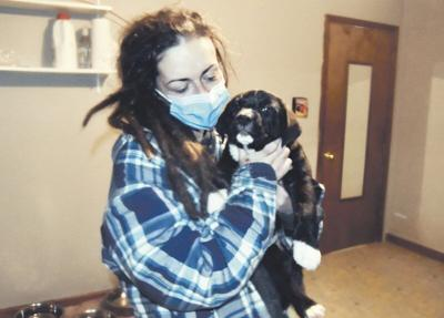 Fundraiser aids area shelters